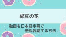 緑豆の花の動画を最終回まで無料視聴する方法!最新再放送・日本放送予定・配信サービス情報もお届け